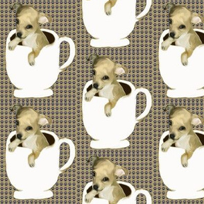 teacup_chihuahua