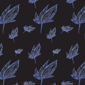 Autumn's blue flower (black background)