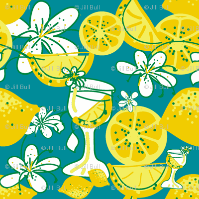 lemon-aid party ©2011 Jill Bull
