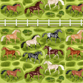 Horses with Fence Decals