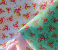 Rrrroses_coordinate_parson_s_mint_comment_136814_thumb