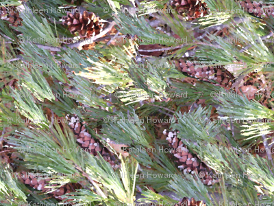 Painted Pine large_4