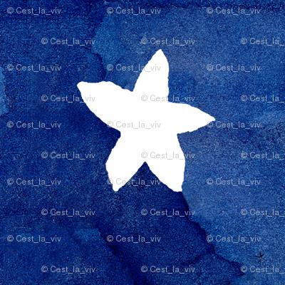 cestlaviv_Sally white STAR