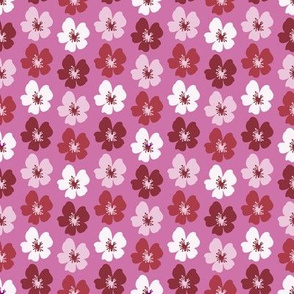 cherryBlossom_pink
