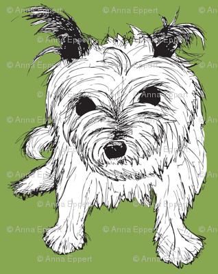 Cairn Terrier Green