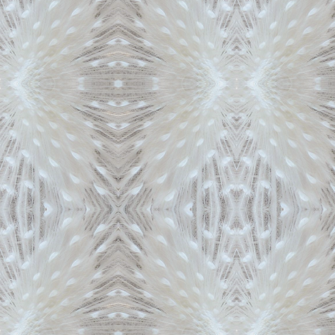 white peacock feathers fabric by krs_expressions on Spoonflower - custom fabric