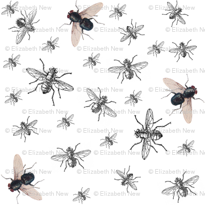 flies and diamonds