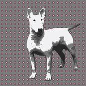 white dog on grey,pink dots