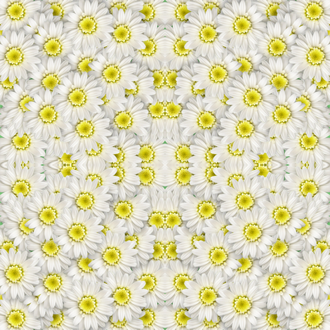 white flowers fabric by krs_expressions on Spoonflower - custom fabric