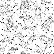 constellations // black and white kids designs nursery stars animals