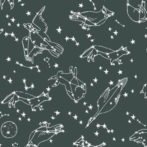 constellations // dark grey charcoal green stars animals kids nursery baby