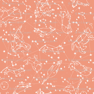 constellations // peach blush kids animals girls nursery baby kids animals moon stars night time