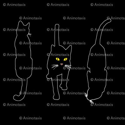 Black Cats 4, S