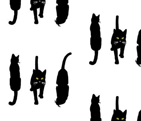 Rrr017_black_cats_5_shop_preview