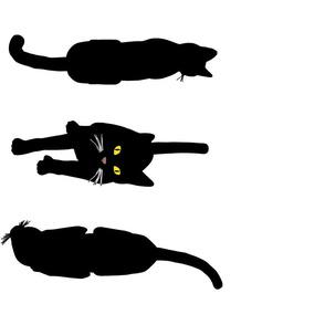 Black Cats 5, Border L