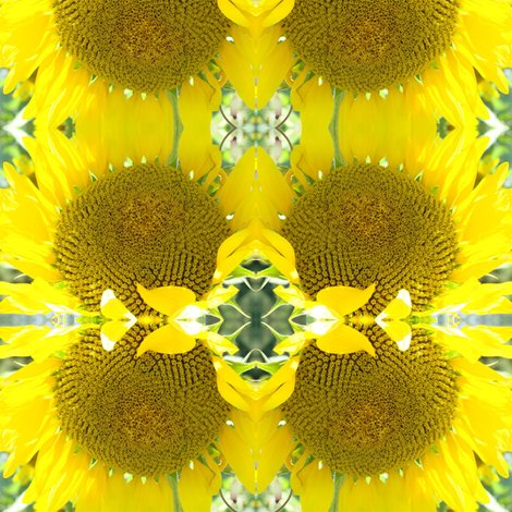 Rrrrrrrrrsunflower_shop_preview