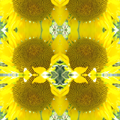 sunflower small fabric by krs_expressions on Spoonflower - custom fabric