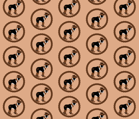 Rodeo Cowgirl fabric by missyq on Spoonflower - custom fabric