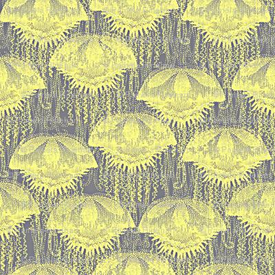 jellyfish sunshine