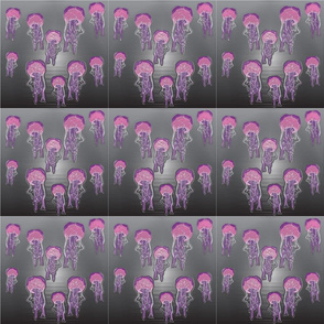 Jellyfish_jpg_plastic_1_29_2012