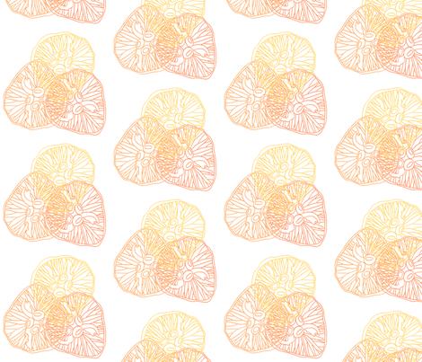 Jellyfish_Fabric_tri_colour_copy fabric by jacqueline_wilson on Spoonflower - custom fabric