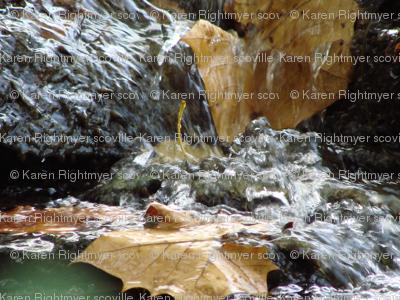 leaves in waterfall big