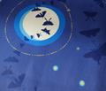 R01_moth_moon_coordinates_rev_56_inch-01_comment_141410_thumb