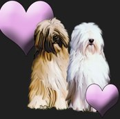 Rrtibetan_terriers_with_hearts_shop_thumb