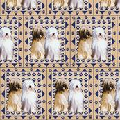 tibetan_terrier_with_pawprints