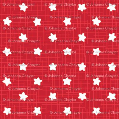 red sea stars