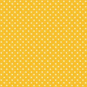 yellow sea stars