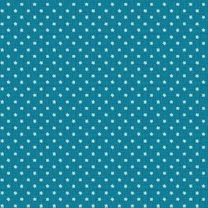 blue sea stars
