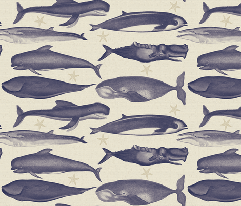 whales_navy fabric by natasha_k_ on Spoonflower - custom fabric