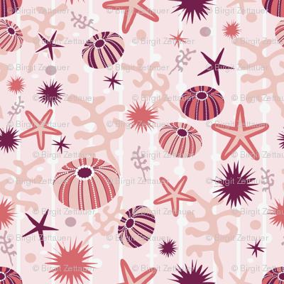 sea_urchin_ditsy