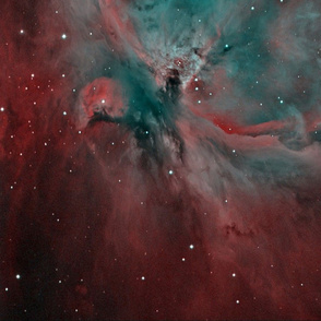 Orion_Nebula_HOO_narrowband_with_FLI_ML8300