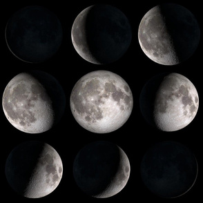 Final Frontier Collection ~ Phases of the Moon ~ Medium