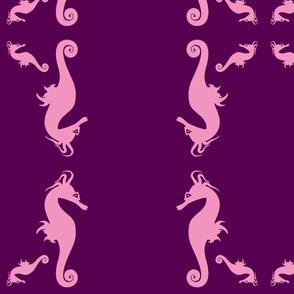 Seahorses!!!