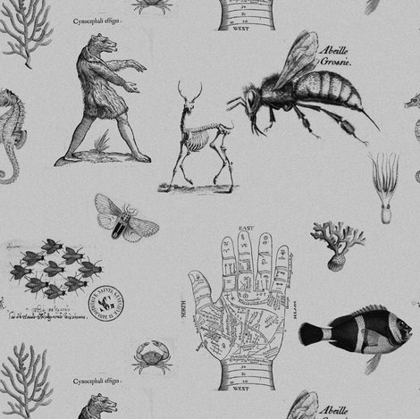 vintages grayscale fabric by ravynka on Spoonflower - custom fabric