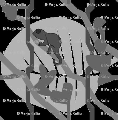 Brookesiinae Gray