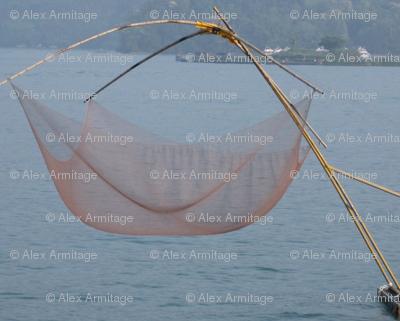 Taiwanese Fishing Net