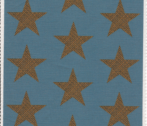 cinema burlap Star