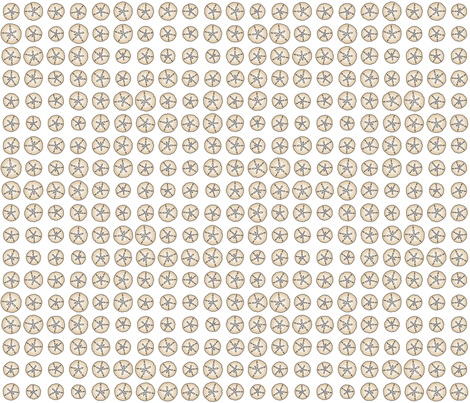 Bonaire Baby - Sanddollar Dot White fabric by jmckinniss on Spoonflower - custom fabric