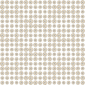 Bonaire Baby - Sanddollar Dot White