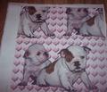 Rrrbulldog_babies_comment_144825_thumb