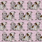 Rrrbulldog_babies_shop_thumb