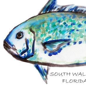 blue_fish_SOUTH_WALTON