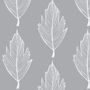 thin white and grey leaf