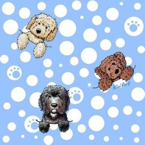 Pocket Doodle Dogs