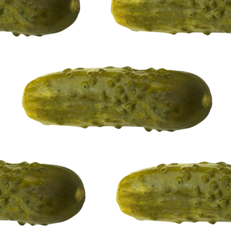 Big Pickles fabric by sufficiency on Spoonflower - custom fabric