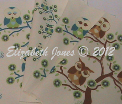 Rrr3_sleepy_owls_sitting_in_a_tree_with_grass_comment_145167_preview